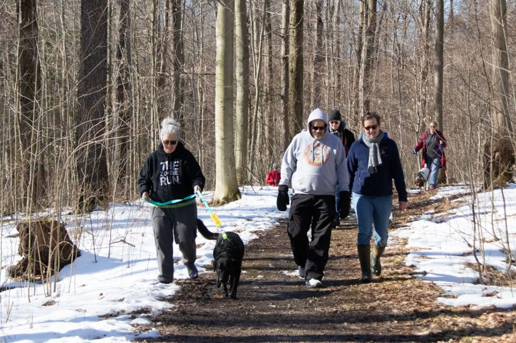 Something Els Dog School January 2021 Social Walk for Dogs