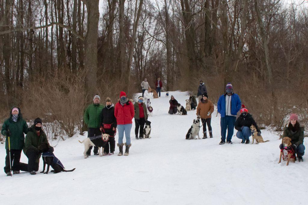 winter social dog walk positive reinforcement erie, pa